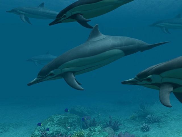 Deep-sea dolphins: 3D ocean screensaver