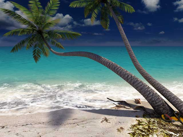Nature 3D Screensavers - Sandy Beach - A private beach on your ...