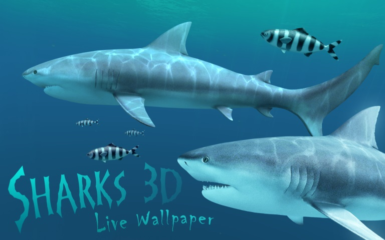 Sharks 3D Mac 破解版 鲨鱼动态壁纸应用