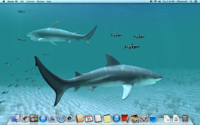 Sharks 3D for Mac 1.3.0 激活版 – 鲨鱼动态壁纸应用-麦氪派