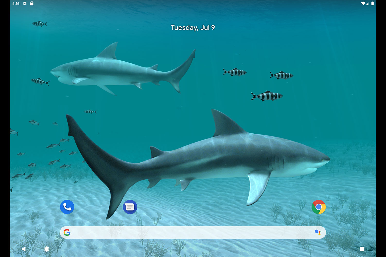 Android 3D Screensavers - Sharks 3D - Live Wallpaper -