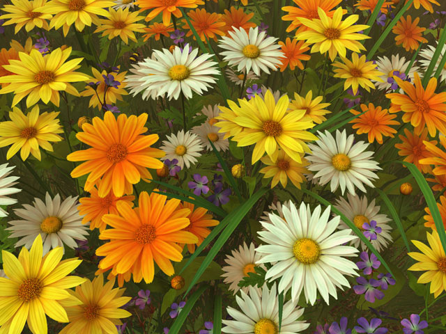 Nature 3d Screensavers Wildflowers A Calm Peaceful Floral Themed 3d Screensaver